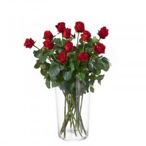12 Rote Rosen